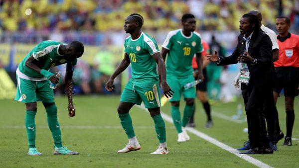 بث مباشر لنهائي كأس الأمم الأفريقية 2019