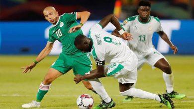 رابط ايجي ناو بث مباشر لمباراة الجزائر والسنغال 19-7-2019