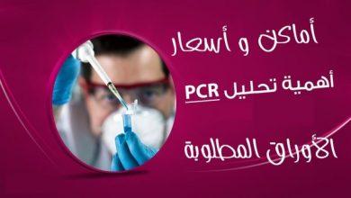 Photo of شرح طريقة الحجز إلكترونيا لإجراء تحليل PCR لمسافري السعودية