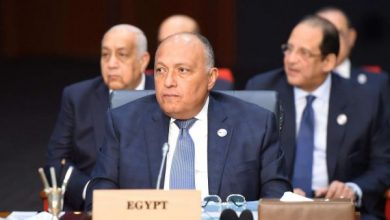 صورة سد النهضة.. كلمة سامح شكري وزير الخارجية في مجلس الأمن